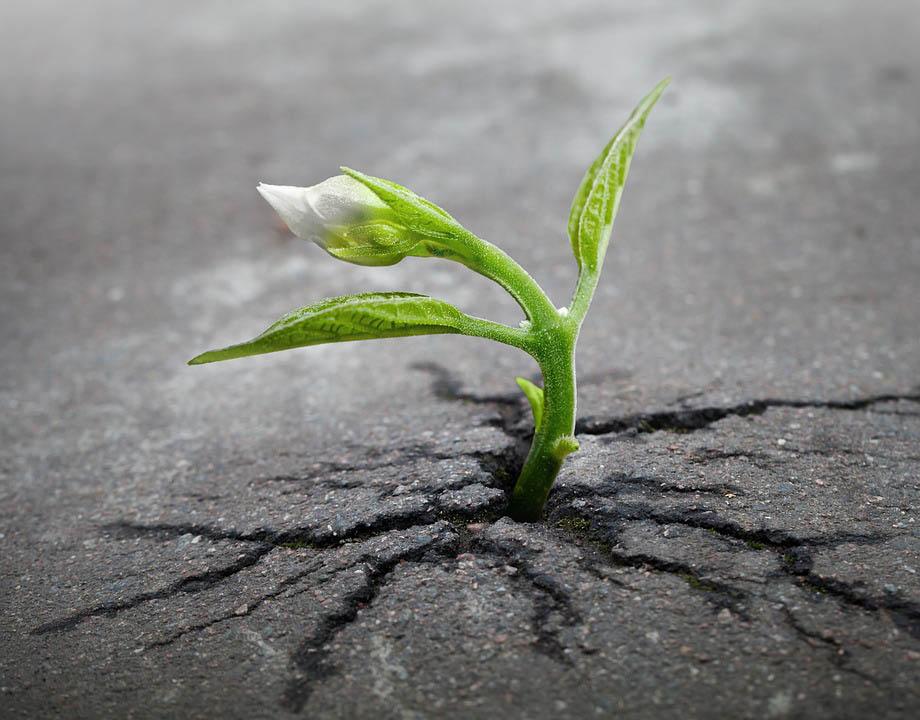 9 วิธีฝึกใจอย่างไร ให้กลายเป็นคนแข็งแกร่ง เพื่อก้าวไปข้างหน้า