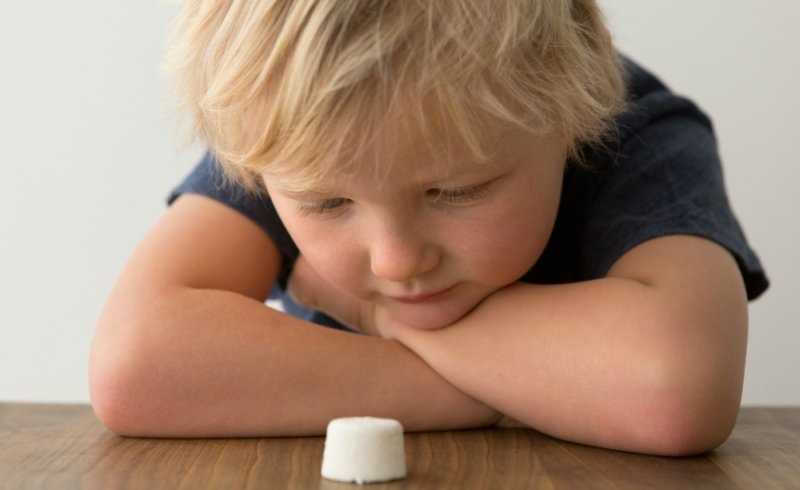 ฝึกใจเด็ก ๆ ด้วยการทดลองมาร์ชเมลโล่